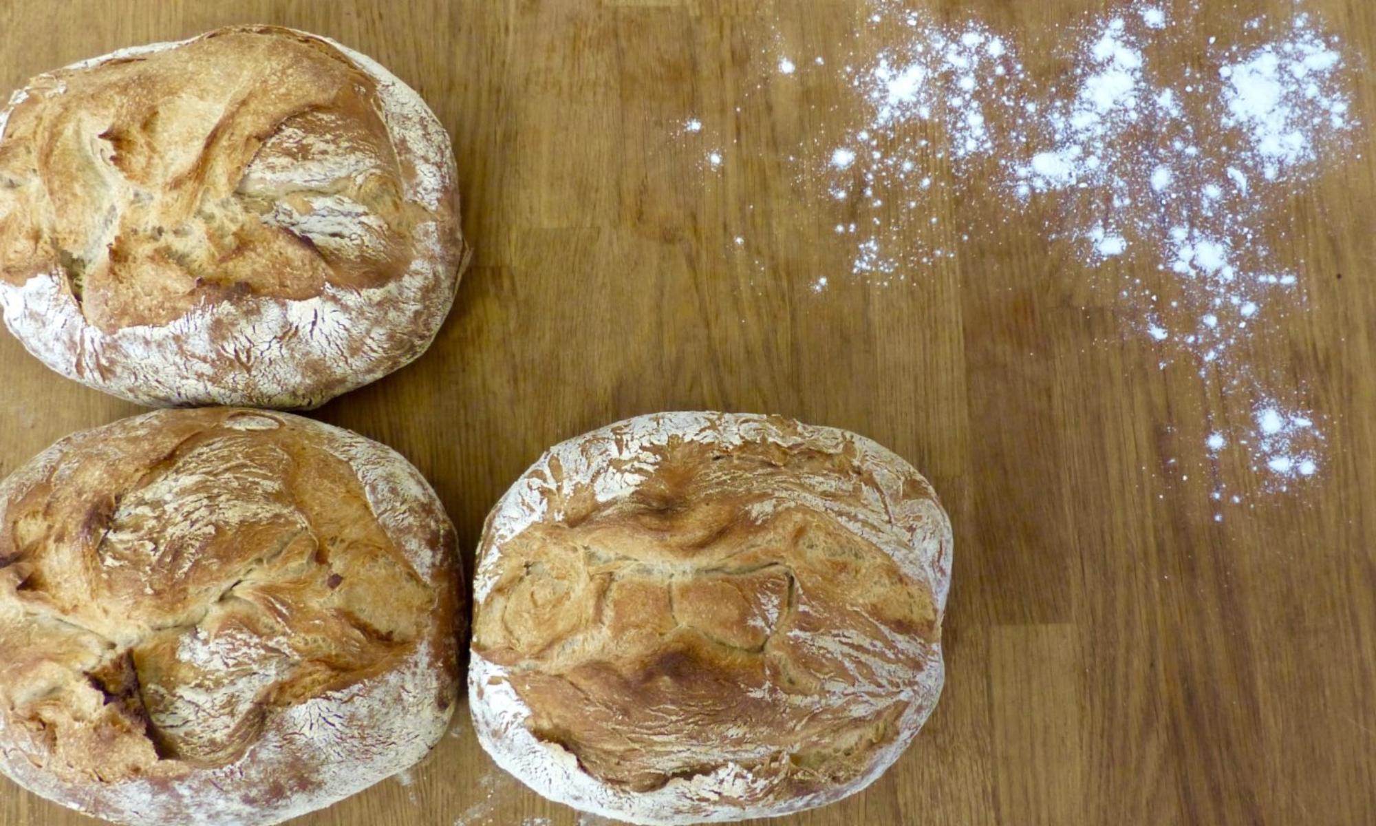 Økologisk bakeri